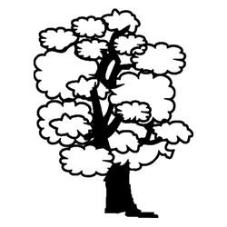 Træ-2
