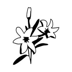 Blomst-28