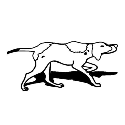 Hund-9