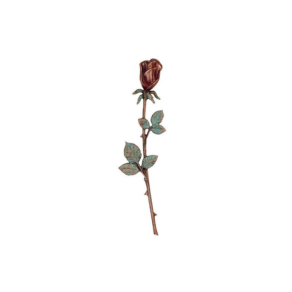 Rose nr. 20137