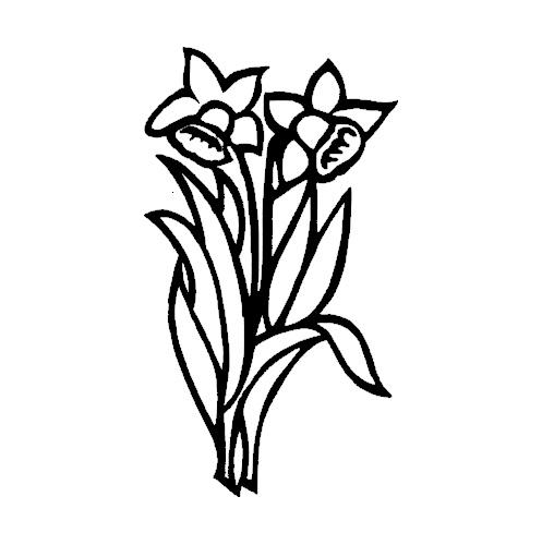 Blomst-17