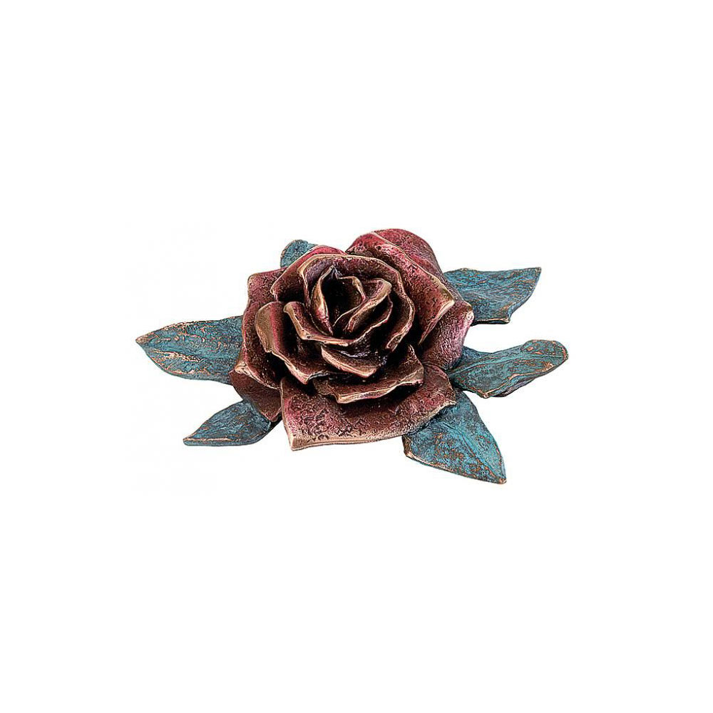 Rose nr. 20444