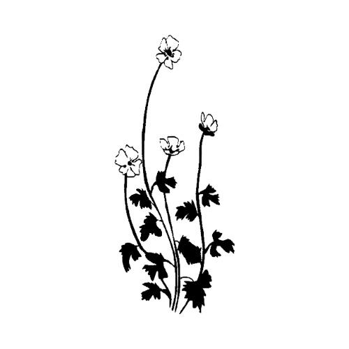 Blomst-10