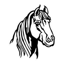 Hest-5