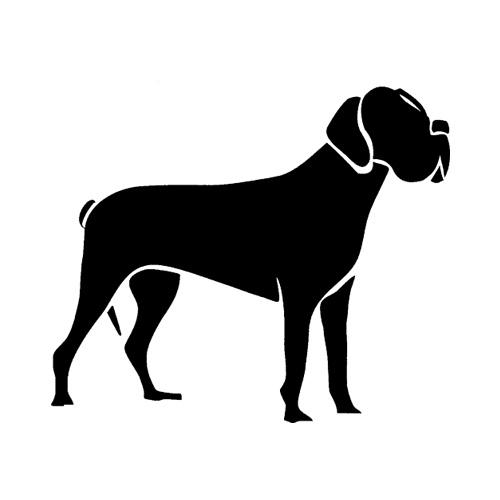 Hund-13