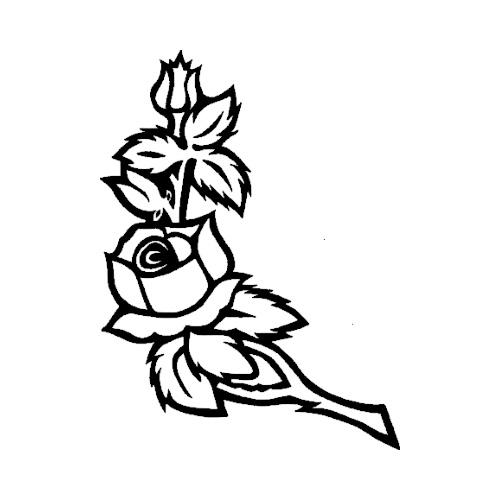 Blomst-20