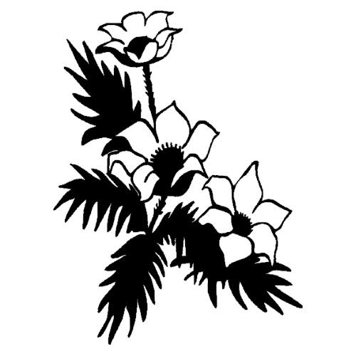 Blomst-21