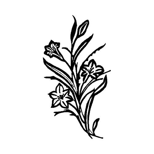 Blomst-23