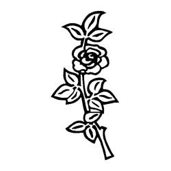 Blomst-13