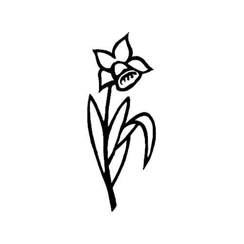 Blomst-16
