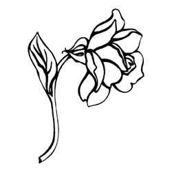 Blomst-9