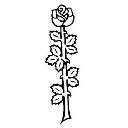 Blomst-42