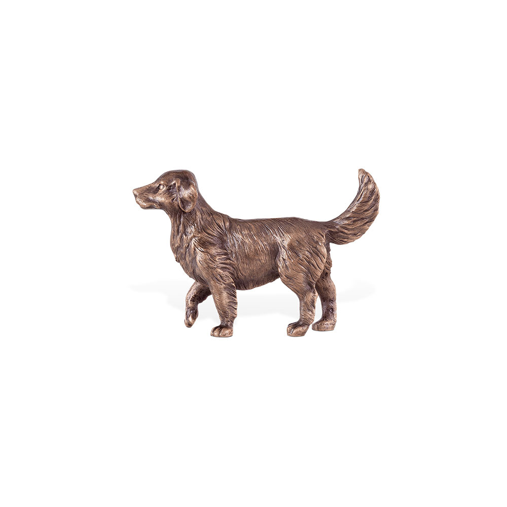 Hund nr. 85405