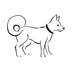 Hund-8