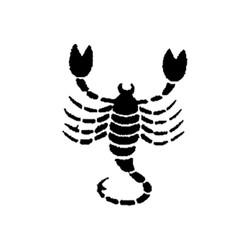 Skorpionen-2
