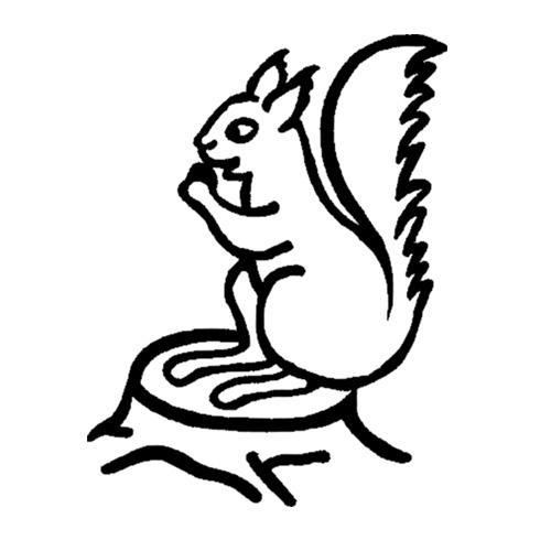 Egern-2