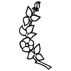 Blomst-33