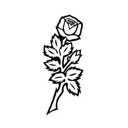 Blomst-19