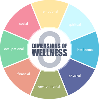 8_dimensions_edited.png