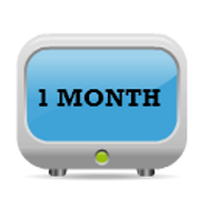 1 Month (30 days) of remote consulting assistance!