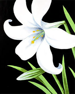 Easter Lily.png