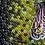 Thumbnail: Wasp Spirit Guide