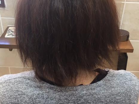 NEWトリートメント続編