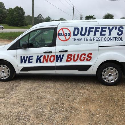 Bugs .jpg