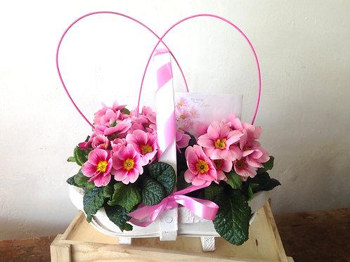 Mothers garden gift