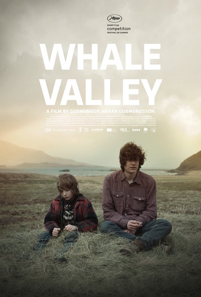 Whale Valley  |  2013
