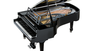 Introducing... the Howdenshire Piano Appeal