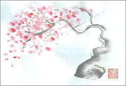 桜□.jpg