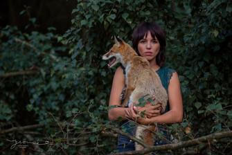 Fotoshooting mit Fuchs