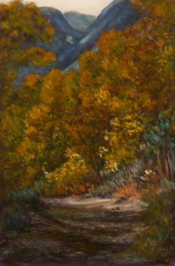 Golden Hues at Lundy Canyon