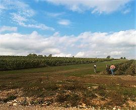 фото экскурсия на винодельню Шато Легран Восток