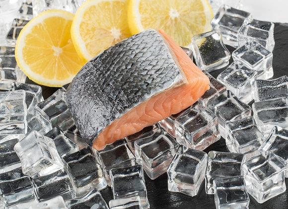 Salmon Fish (三文鱼肉)