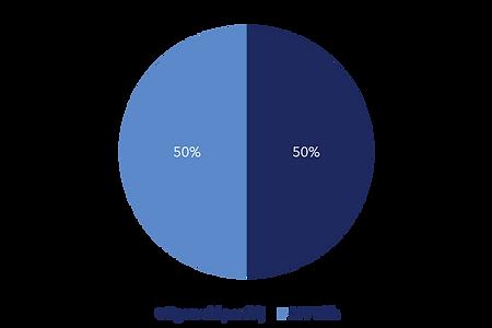 graf 1.png