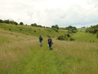 Wildlife Trust nature reserves open but social distancing encouraged