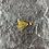 Thumbnail: Panfish Jigs 1/32 oz