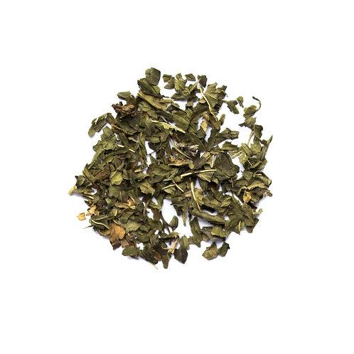 Evergreen Peppermint
