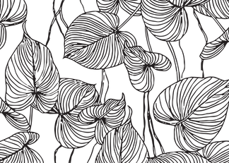 FlourishingGraphics-2_edited.png