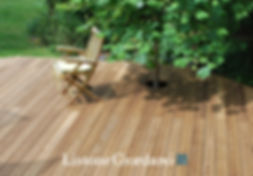 LG Outdoor.jpg