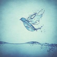 holy-spirit-water.jpg