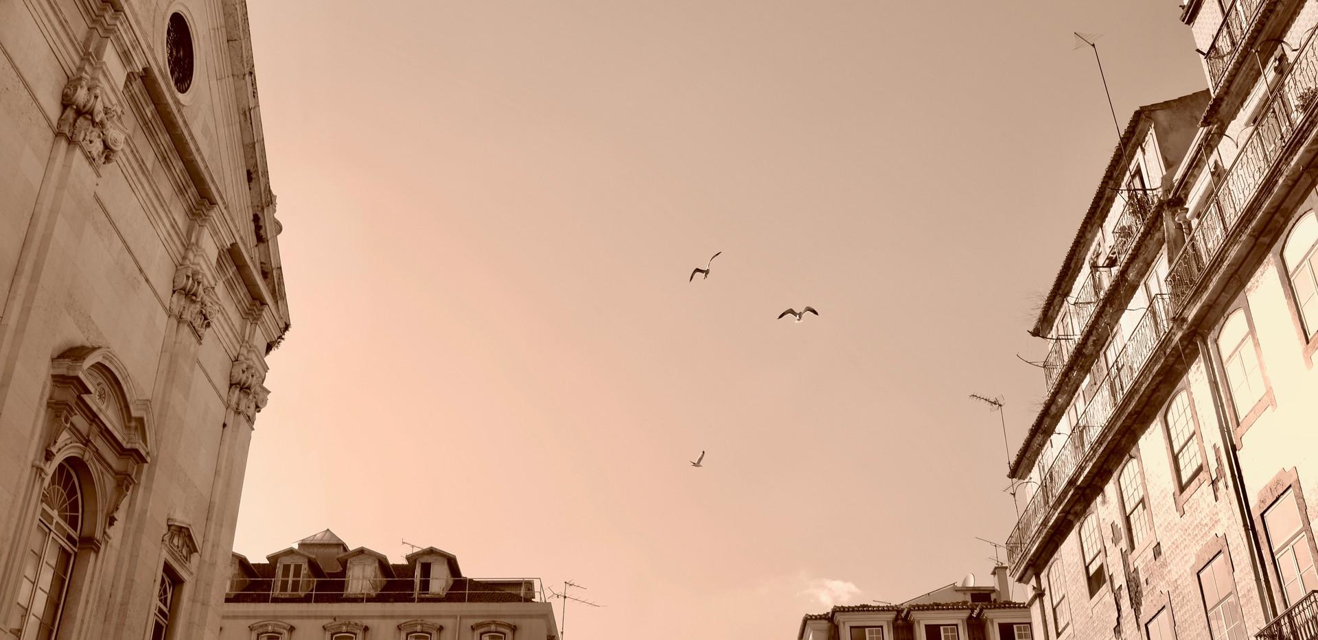 lisboa flight