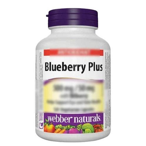 Webber Naturals - 特級護眼濃縮藍莓+越桔 (歐洲藍莓) 精華 (500 毫克 / 50 毫克) 120 粒(平行進口貨)