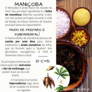 ManiçobaINFOGRAFICO(1).png