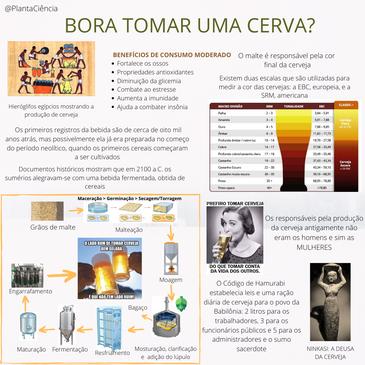 CERVA CORRIGIDO.png