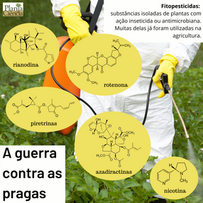 fitopesticidas.png