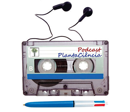 cassete podcast b.jpg