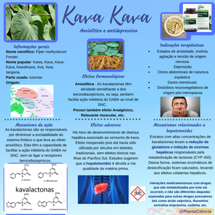 kava ava (1).png